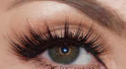 Sophisticated–3D-Natural-Lashes